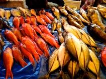 Fresh fish at Pasar Central