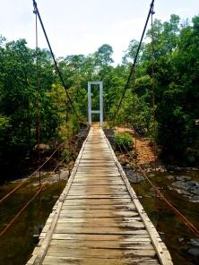 A bridge in Bili Bili
