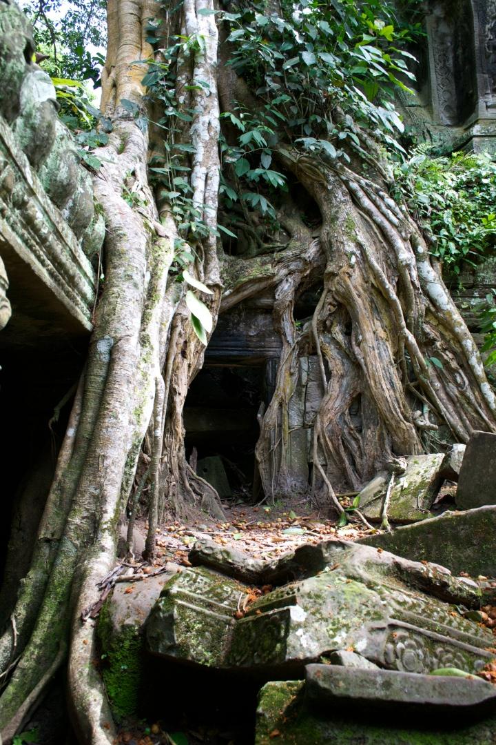 Ta Prohm: A Beautiful RuinousMonument