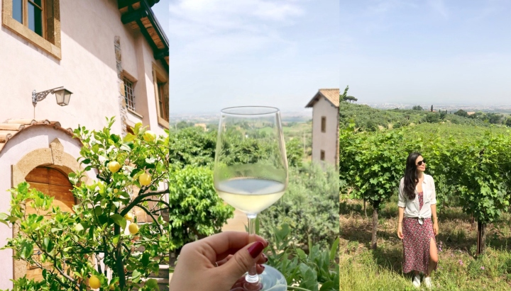 Visiting a 16th Century Vineyard in Frascati​, Italy